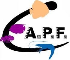 Logo CAPF petit